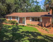 5137 Mount Plymouth Road, Apopka image