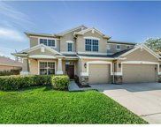 1646 Tawnyberry Court, Trinity image