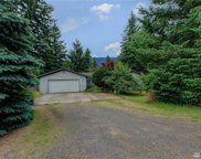 43817 SE 136th St, North Bend image