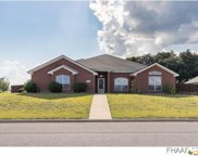 510 Crowfoot Drive, Harker Heights image
