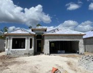 17140 Galway Run, Bonita Springs image