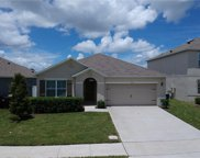 5107 Foxtail Fern Way, St Cloud image