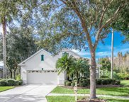 10104 Evergreen Hill Drive, Tampa image
