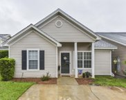 105 West Horn Court, Chapin image