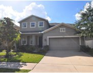 3523 Marmalade Court, Land O Lakes image