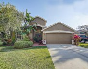 9026 Cliff Lake Lane, Tampa image