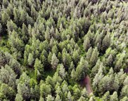 Lostine Timber Tract, Enterprise image