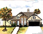 949 Gruene Place Dr, New Braunfels image