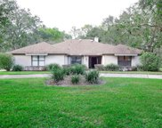 1751 Crown Point Woods Circle, Ocoee image