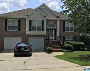 687 Bluff Park Rd, Hoover image
