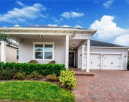 3218 Irish Peach Drive, Winter Garden image