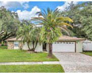 513 Constitution Drive, Tampa image