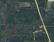 85 Acres County Hwy 183 South, Defuniak Springs image