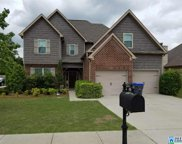 121 Shelby Farms Dr, Alabaster image