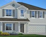 10054 Geese Trail Circle, Sun City Center image