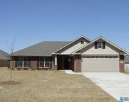 221 Waterford Cove Trl, Calera image