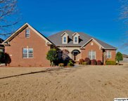 25560 Gray Stone Drive, Madison image