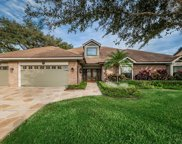 300 Sheffield Circle E, Palm Harbor image
