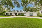 1717 Green Meadow Drive, Lutz image