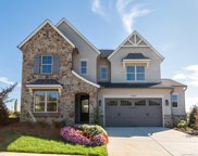 1040 Thatcher  Way, Fort Mill image