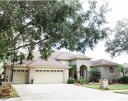3671 Justin Drive, Palm Harbor image