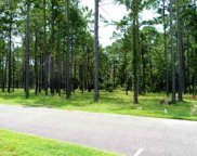 Lot 585 Yellow Morel Way, Myrtle Beach image