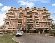465 West Dominion Drive Unit 1504, Wood Dale image