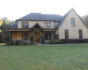 4224 Hickory Run, Arlington image