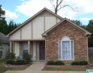 425 Fox Run Cir, Pell City image