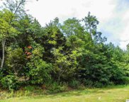 Lot#3 Seaton Springs Road, Sevierville image