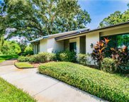 1702 Cypress Trace Drive, Safety Harbor image