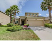 33732 Honeywood Avenue, Wesley Chapel image
