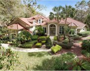 495 Fawn Hill Place, Sanford image