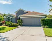 11524 Cypress Reserve Drive, Tampa image