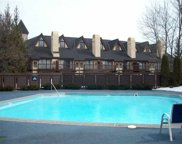 5620 Highlands Dr.  617 & 618 Unit #12, Harbor Springs image