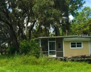 8044 Lake Nellie Road, Clermont image
