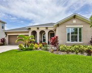 6913 Covington Stone Avenue, Apollo Beach image