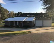 110 Green St, Pell City image