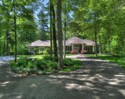11040 Sandy Oak Trail, Cedar Springs image