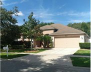 8942 Aberdeen Creek Circle, Riverview image