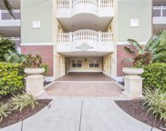1114 Sunset View Circle Unit 302, Reunion image