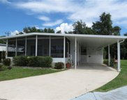 420 Timber LN N, North Fort Myers image