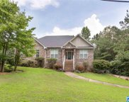 210 Wolf Dr, Odenville image