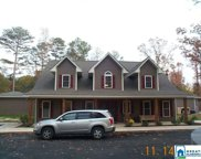 10520 Hwy 411, Odenville image