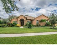 824 Citrus Wood Lane, Valrico image