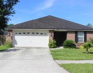 2695 SECRET HARBOR DR, Orange Park image