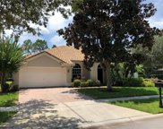 11044 Belmere Isles Court, Windermere image