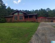 6505 Mays Bend Road, Pell City image