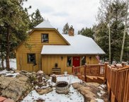 12042 Alvin Place, Conifer image