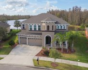 8226 Swiss Chard Circle, Land O Lakes image